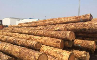美国出口至中国的原木的详细要求