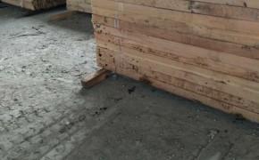 松木板材批发