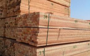 辐射松建筑木方