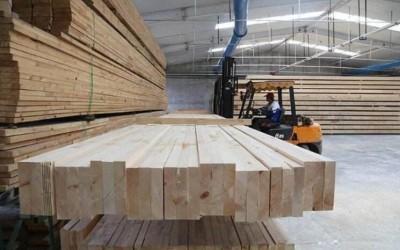 深度分析:木材加工企业属于污染企业吗?