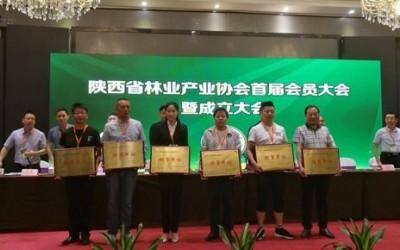 陕西省林业产业协会成立并揭牌