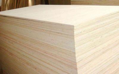 西班牙胶合板生产商Garnica公司选择主打杨木胶合板
