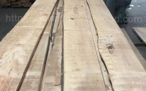 进口榉木毛边板 实木B级 26/32mm 地板木料批发