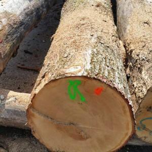 法国白橡原木品牌