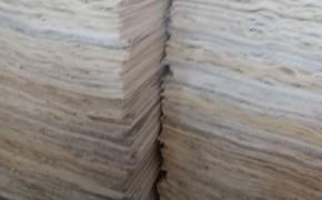 徐州杨木单板板皮