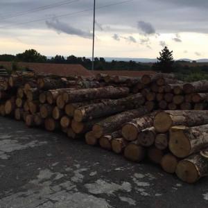 欧洲白橡木原木品牌