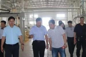 临沂质监局到探沂镇调研国家级人造板产品质量提升示范区工作