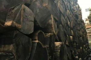 环保打击,张家港木材市场萧条!