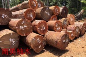 广西灵山县大力发展木业推动经济发展