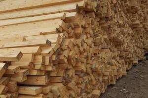 俄罗斯网络疯狂谣传中国木材商破坏俄罗斯林业!