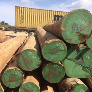 南美《尤加利》玫瑰桉木原木品牌