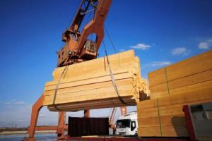 罗马尼亚的木材业驳斥环