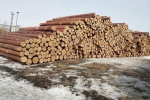 绥芬河中俄木材加工交易