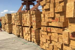 湖南攸县木材市场清理初
