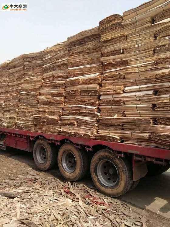 白杨木刨切单板木皮品牌和产区