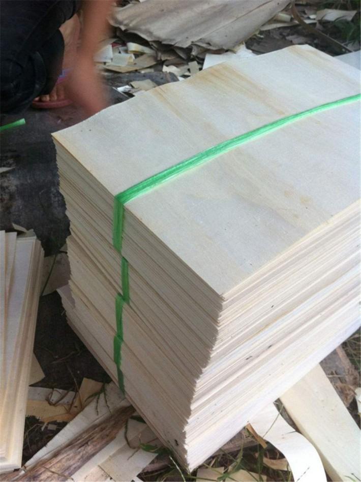 白杨木刨切单板木皮是什么?
