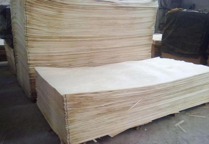 我国每年的白杨木刨切单板木皮产量和消耗量均位于世界前列。