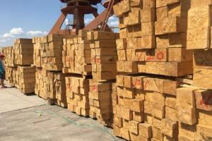 七苏木中欧班列木业企业