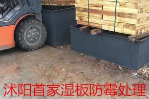 泗阳木材加工厂家直销杨木板枋材