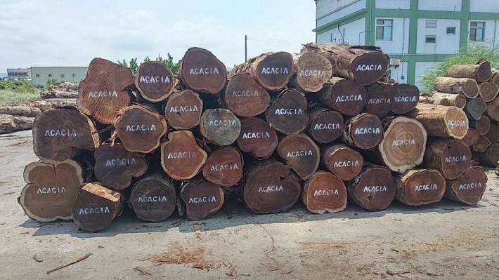 台湾小叶相思木原产中国台湾,遍布全岛平原