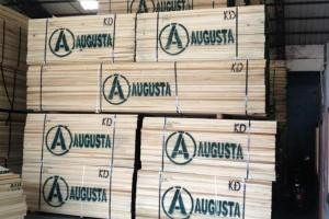 广东进口美国黄杨木板材1.8~4.8米长1~2寸厚
