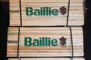 广东进口美国白蜡木板材1.8~4.8米长1~2寸厚