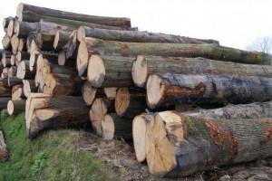 贸易战中国反击 美国木