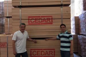 进口欧洲榉木板材,实木家具板克罗地亚高山榉毛边材直边材