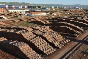 上半年远东铁路木材运输量达248万吨