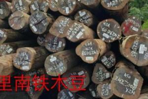 南美原木市场宣传推广力