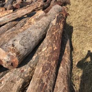 染料血檀(赞比亚)原木品牌