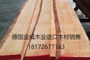 进口欧洲 榉木木板 实木 毛边板 家具板 地板 木材