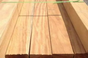 SHYJ提供山樟木古建木材可零售可批发