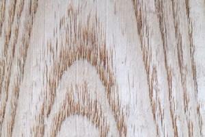 白椿木烘干板材做家具到底好不好?它的价值是多少?