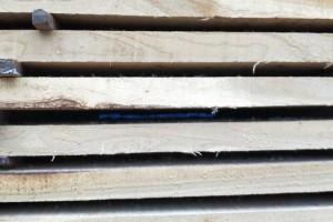 河南榆木烘干板材价格及优点?