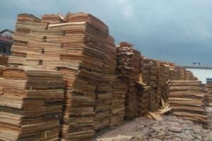 供应杨木皮松木皮 适用于木皮贴面板 木皮批发