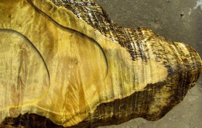 金丝楠木里的金丝是怎么形成的吗?