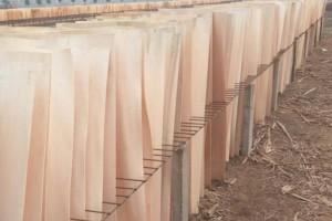 丰县多项木业项目灾后复