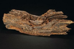 深圳市树种鉴定国标红木树种检测