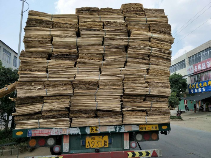 杨木木皮,白杨木旋切木皮,杨木皮子,杨木单板,杨木面皮批发出售