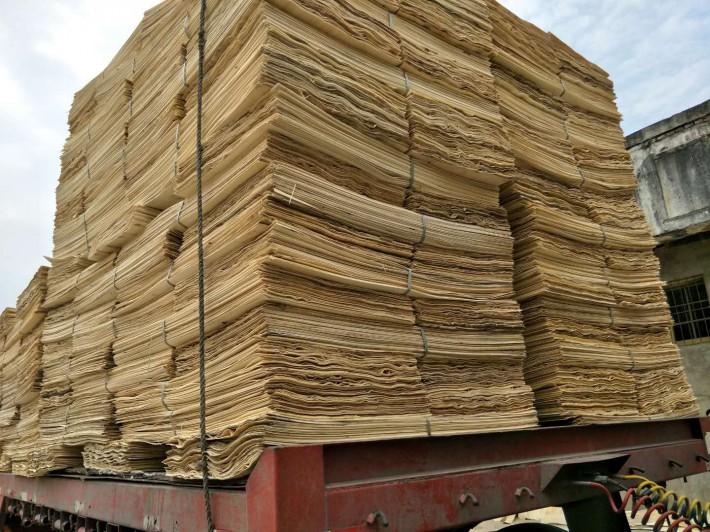 白杨木旋切木皮