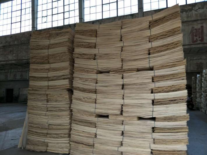 杨木面皮批发出售