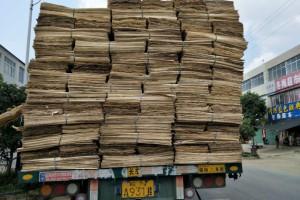 杨木木皮,白杨木旋切木皮,杨木皮子,杨木单板,杨木面皮产品