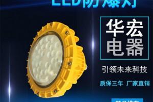 BAD808-M2 免维护LED防爆灯 灯具防爆