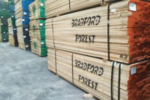 福建华安县一天拆除9家木材加工企业