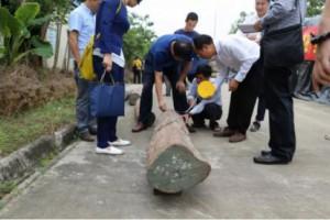 行业专讯:中国红木商学