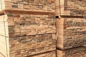 河南安阳:居民区内木材加工厂被取缔