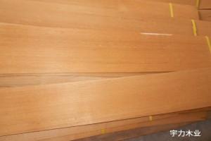 柚木木皮,柚木皮,缅甸柚木木皮天然整版花纹美丽