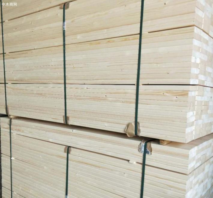 樟子松主要分布于夏凉冬冷且有适当降水的气候条件