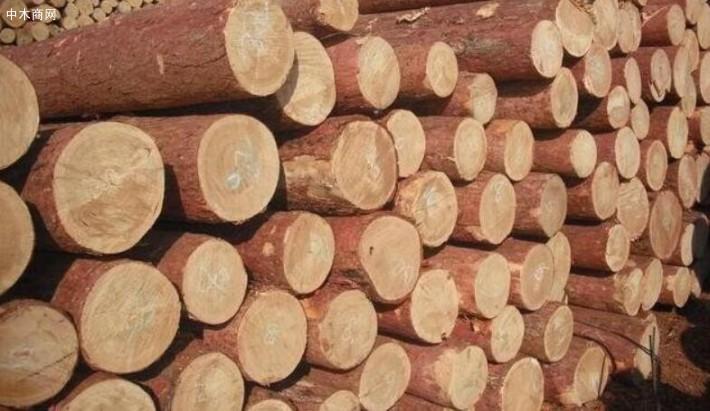 木材经营加工企业扫黑除恶工作推进会议为契机